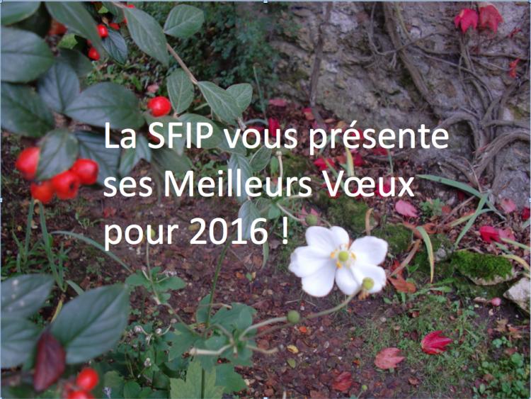 Voeux SFIP 2016
